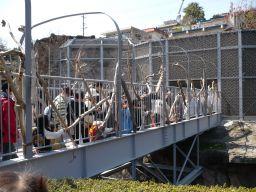 ライオンのワーオチューブ・東山動物園園