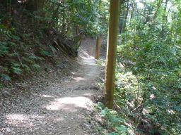 猿投山ハイキング道の写真