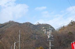 岩戸公園から見た岐阜城と金華山の写真