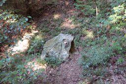 金華山・岐阜城の登山道のカエル岩の写真